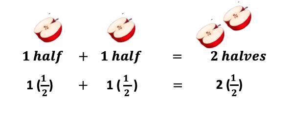 1 half + 1 half = 2 halves