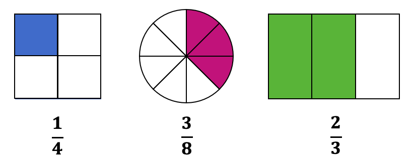 Area Model of Representing Fractions